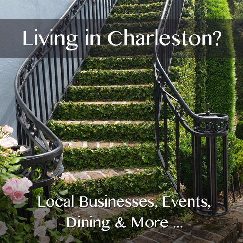 living-in-charleston-2017.jpg